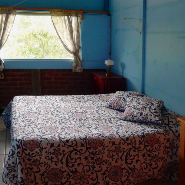 Starfish-room-bed